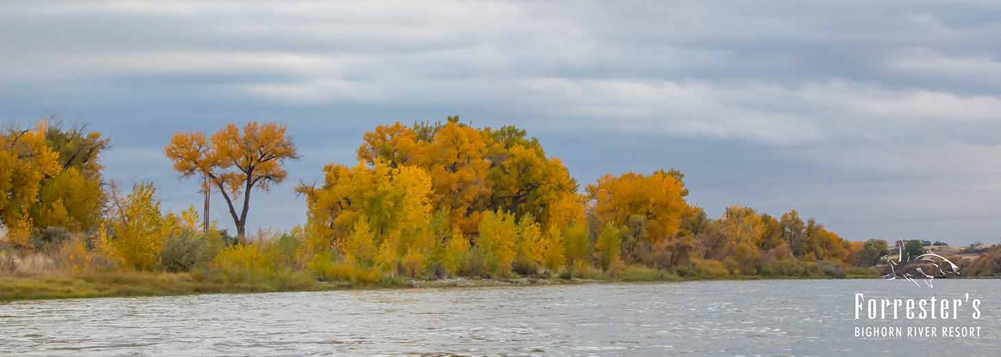 Fly Fishing, Bighorn River, Upland Bird Hunting, Montana hunting, Fishing, Montana Lodges, Fishing Lodge, Hunting Lodge