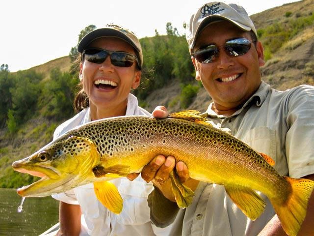 Bighorn River, trout fishing, fly fishing, montana, Big trout, fishing